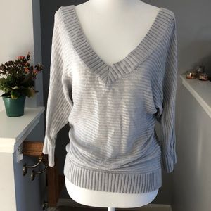 Express Shimmer Sweater